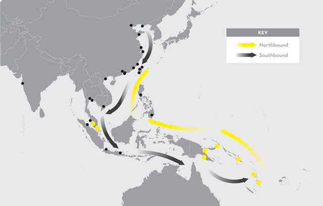 china-south-pacific-1